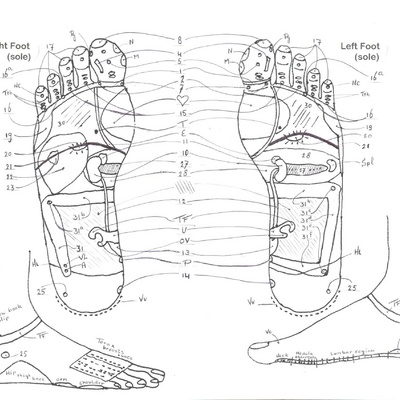 reflexologie_soles_of_the_feet_with_numbers_2340
